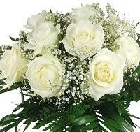 Blumen für Skorpione