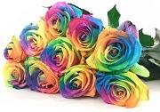 Bunte Blumen für Schütze